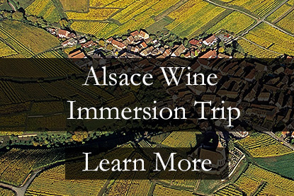 Alsace Wine Tour