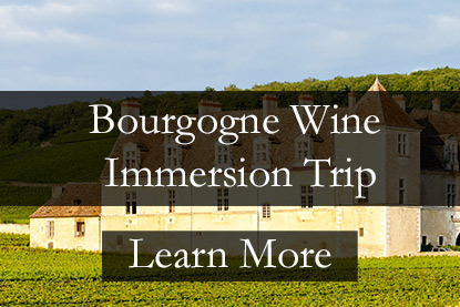 Bourgogne Wine Tour