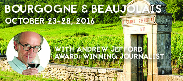 BOURGOGNE & BEAUJOLAIS with Andrew Jefford, award-winning journalist