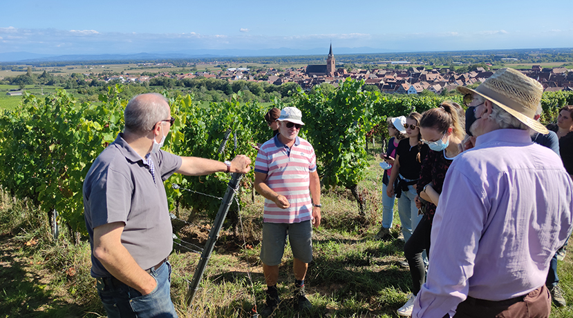 In the vineyards with Jean-Michel Deiss