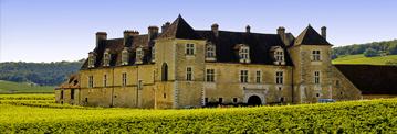 bourgogne359 1 French Wine Society