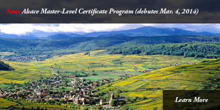 Alsace Master-Level program