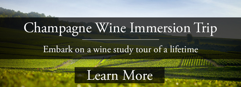 champagne-immersion-study-trip-champagne-wine-tour.html.jpg