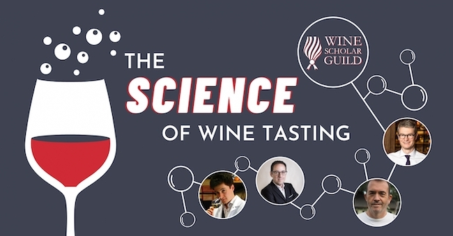 Science of Wine Tasting experts