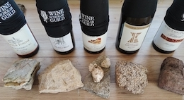 Wines and soils