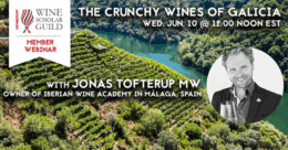 Webinar | The Crunchy Wines of Galicia with Jonas Tofterup MW