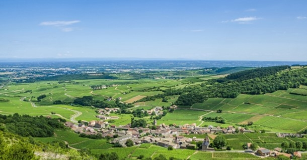 Aerial view of Burgundy