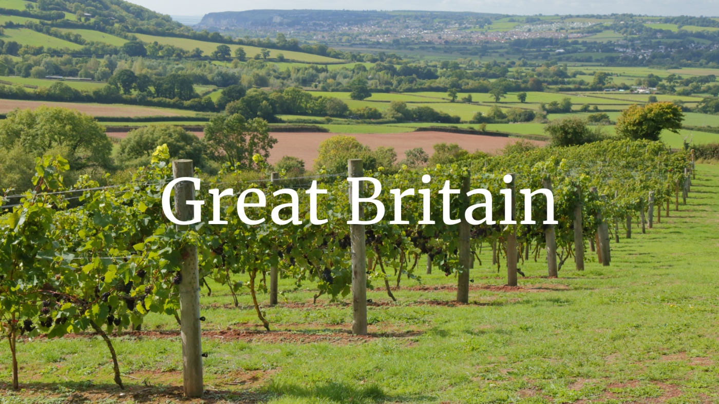 Great Britain – Great Wines with Stephen Skelton MW