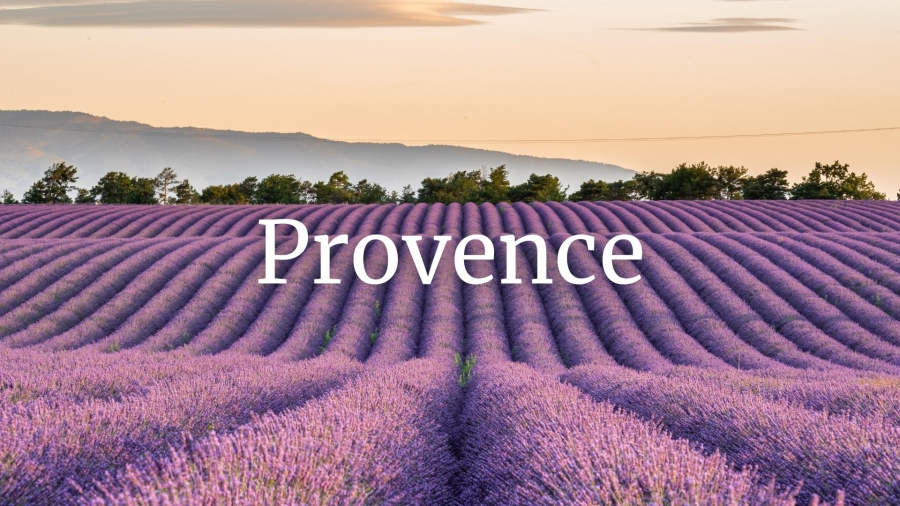 Provence Who's Who with Elizabeth Gabay MW