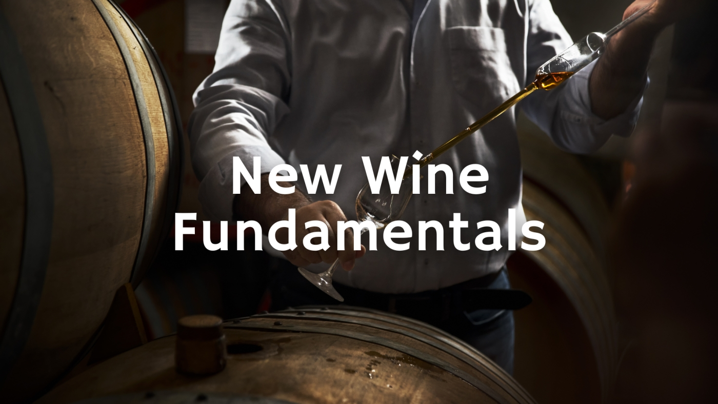 The New Wine Fundamentals with Tim Hanni MW