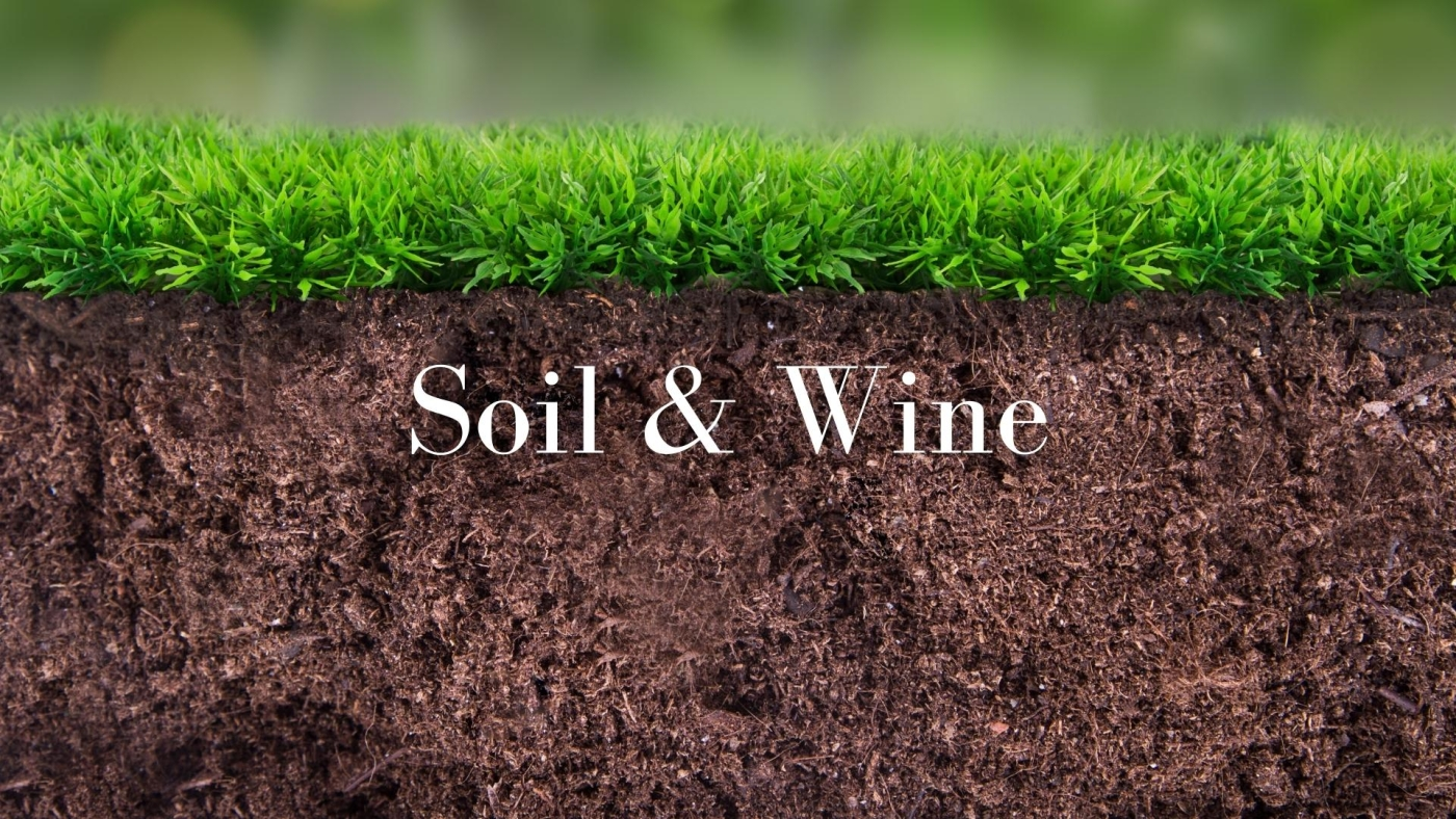 Soil and Wine: What do we really know with Roger Bohmrich MW
