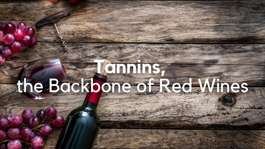 Tannins, the Backbone of Red Wine: Concepts and Craft with James Kennedy