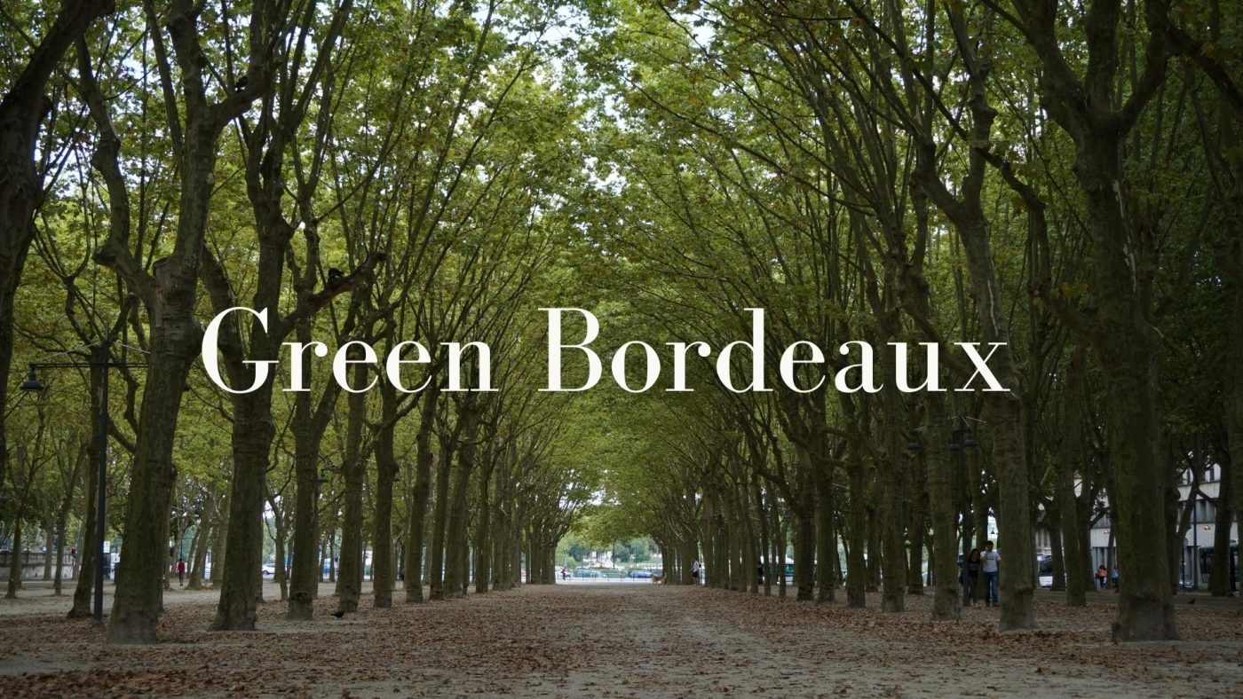Green Bordeaux with Jane Anson