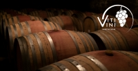 Vine to Wine: A Year of Viti/Vini - March