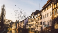 Alsace Wine Who's Who with Thierry Meyer
