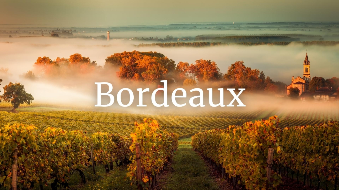 Bordeaux Who's Who with Fanny Darrieussecq