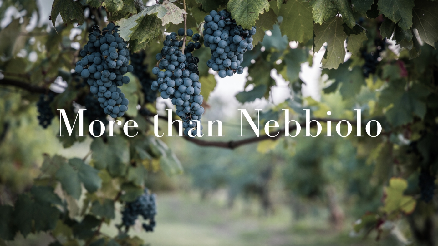 More than Nebbiolo – Delving into Piedmont's Lesser Known Indigenous Varieties with Robin Kick MW