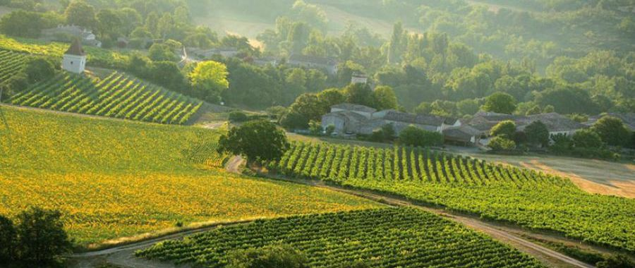 7 reasons why you should tour Southwest France