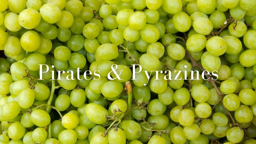 Pirates and Pyrazines with Lisa Airey, CWE, FWS