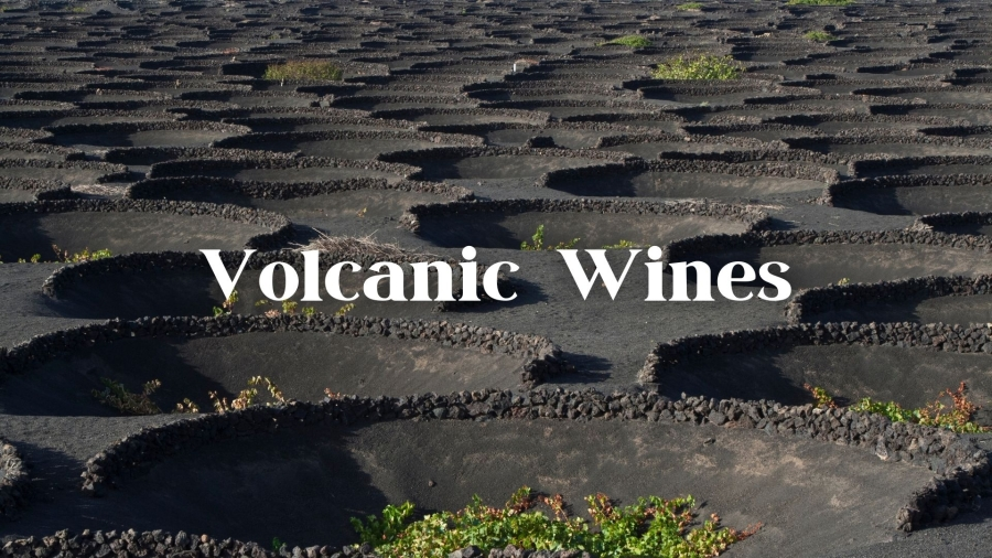 Peeling back the lava with John Szabo MS
