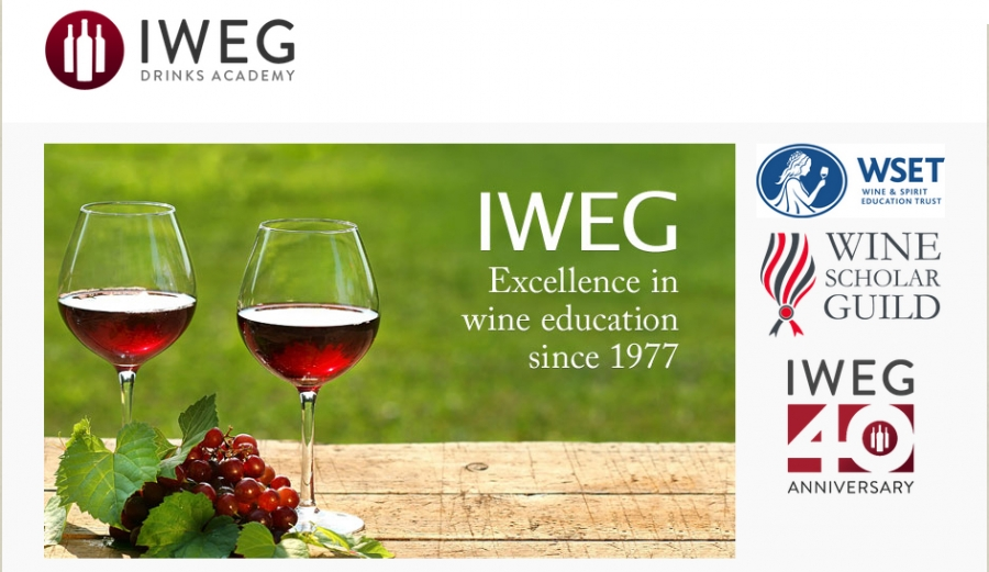 INTERVIEW: Paul Miles, Executive Director at IWEG, a WSG provider in Toronto