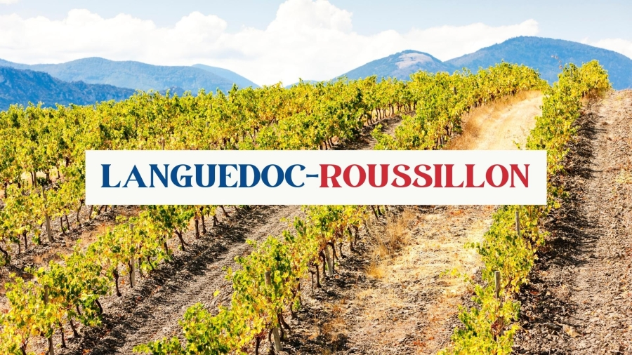 Languedoc-Roussillon with Matthew Stubbs MW