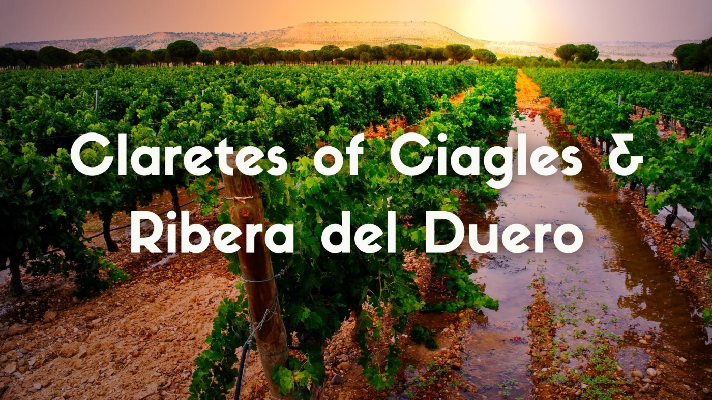 The Claretes of Cigales and Ribera del Duero: historic rosés of north-eastern Spain with Elizabeth Gabay MW