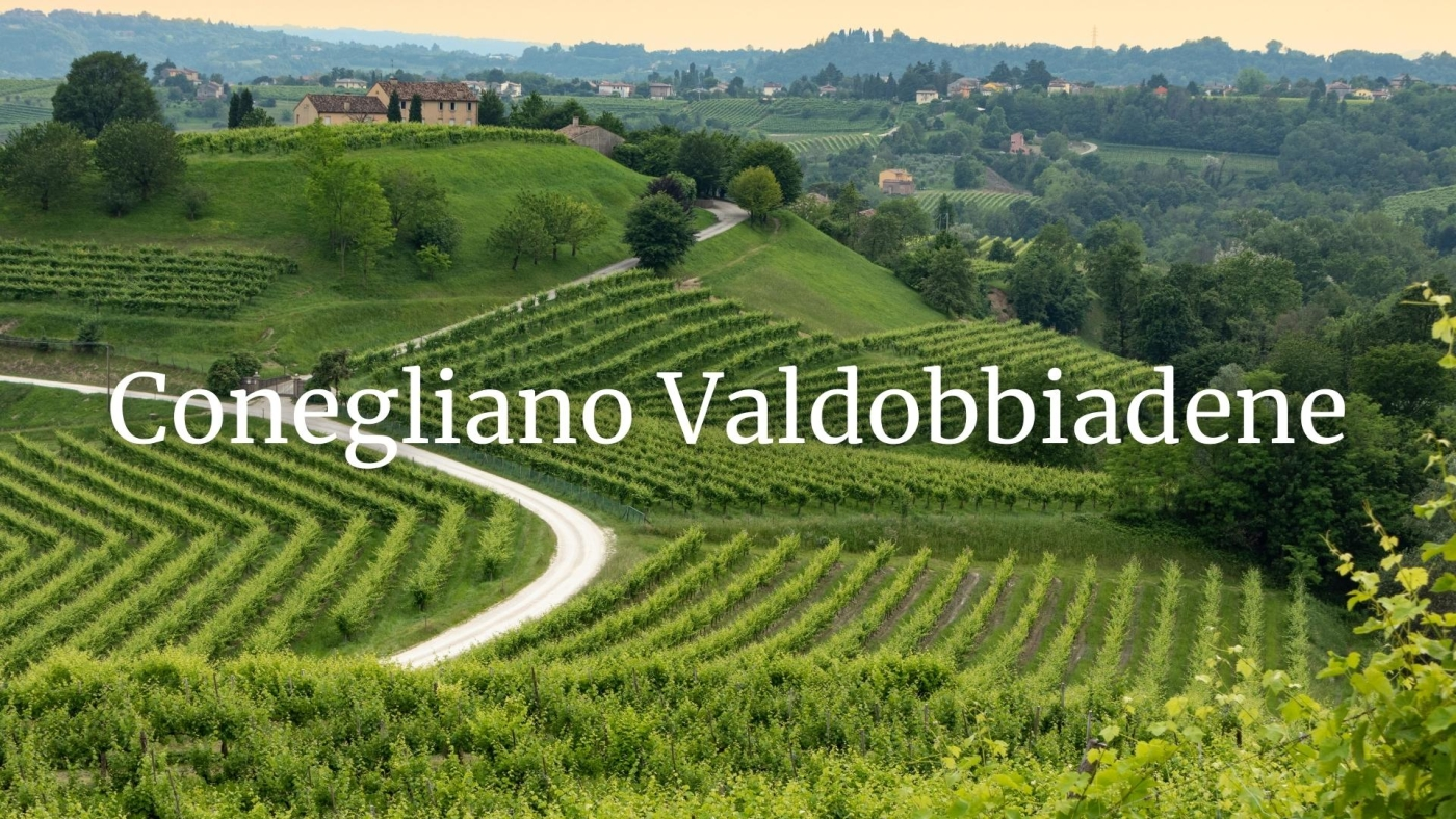 Conegliano Valdobbiadene Who's Who with Alan Tardi