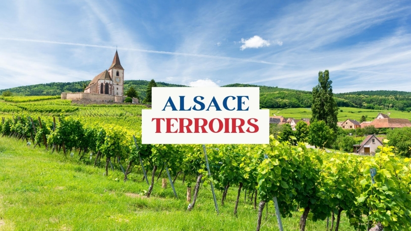 Alsace Terroirs with Olivier Humbrecht MW