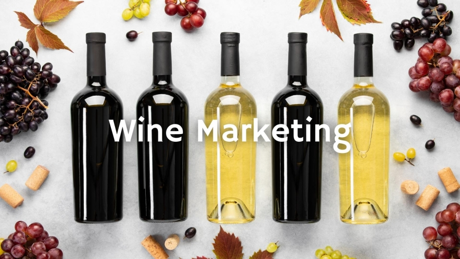 When Choosing a Wine Label, Women are from Hollywood and Men are from Boston with Dr. Wolf