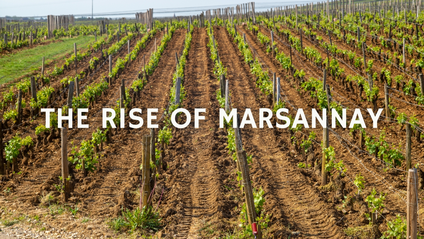 The Rise of Marsannay with Christy Canterbury MW