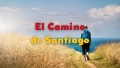 El Camino de Santiago: Walking 4 Wine with Bill Sanders