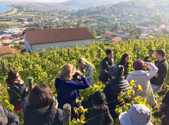 Memories from our 2015 Rhône wine study trip with Andrew Jefford!