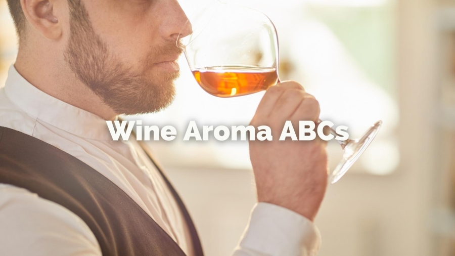 Wine Aroma ABCs with Lisa Airey