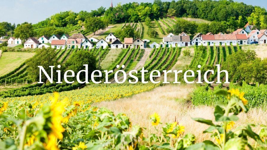 Niederösterreich (Lower Austria) – Refined wines from along the Danube with Andreas Wickhoff MW