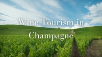 Wine Tourism In Champagne with Mary Kirk Bonnet