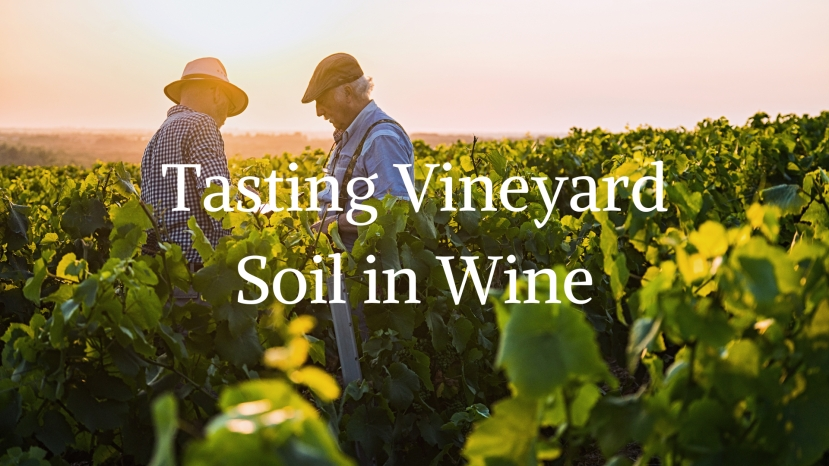 Tasting Vineyard Soil in Wine with Alex Maltman