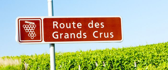 5 Things to Keep in Mind When Visiting Producers in Burgundy
