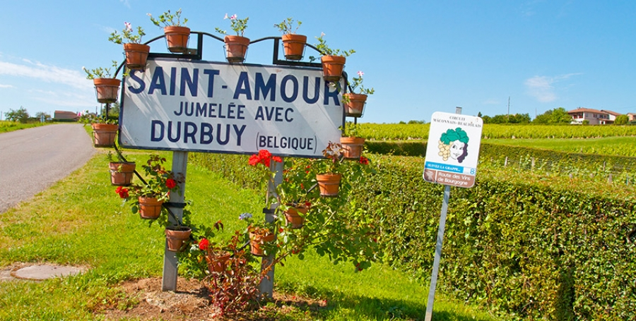 What makes each of the 10 crus Beaujolais special - With Map