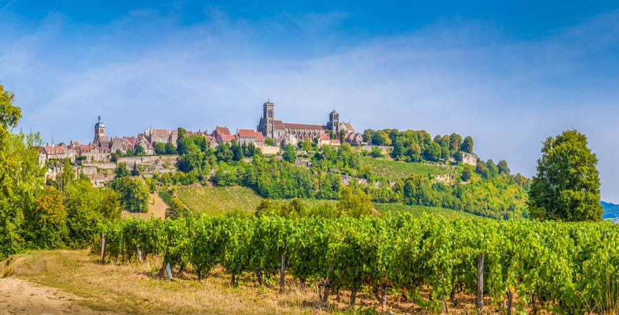 2017 Brought Changes To The Way We Look At Bourgogne Wines