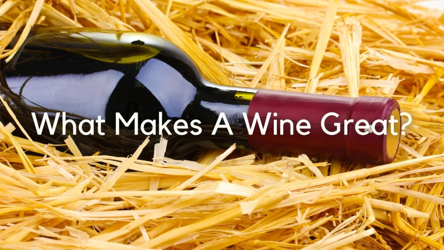 What makes a wine great with Lisa Airey, CWE, FWS