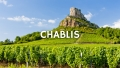 Chablis: Evolution, not Revolution with Rosemary George MW