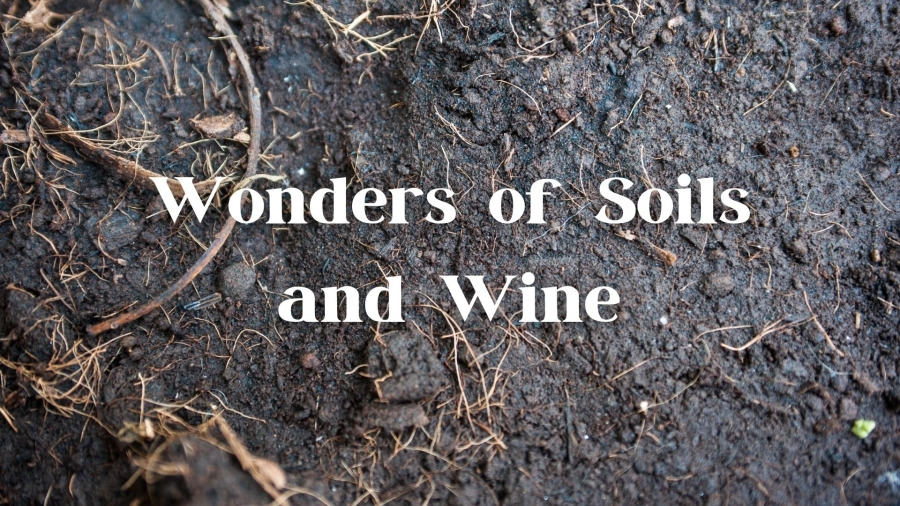 Wonders of Soil and Wine - Wine Geology Q&A with Alex Maltman