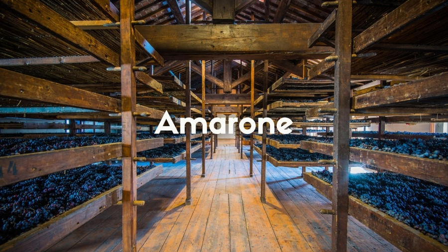 The Secrets of Amarone with Deborah Parker Wong