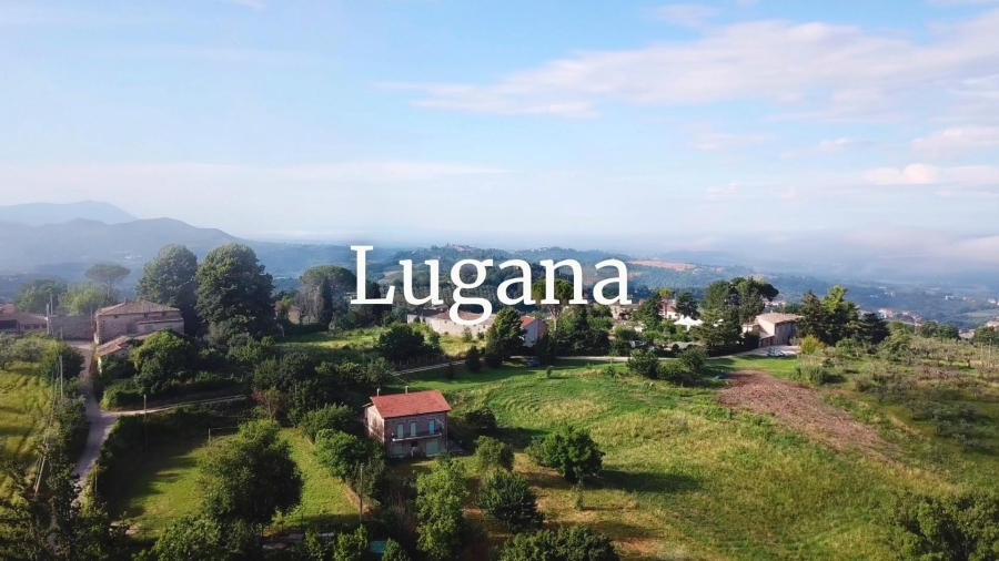 Lugana, the liquid gold of Lake Garda - with Susannah Gold