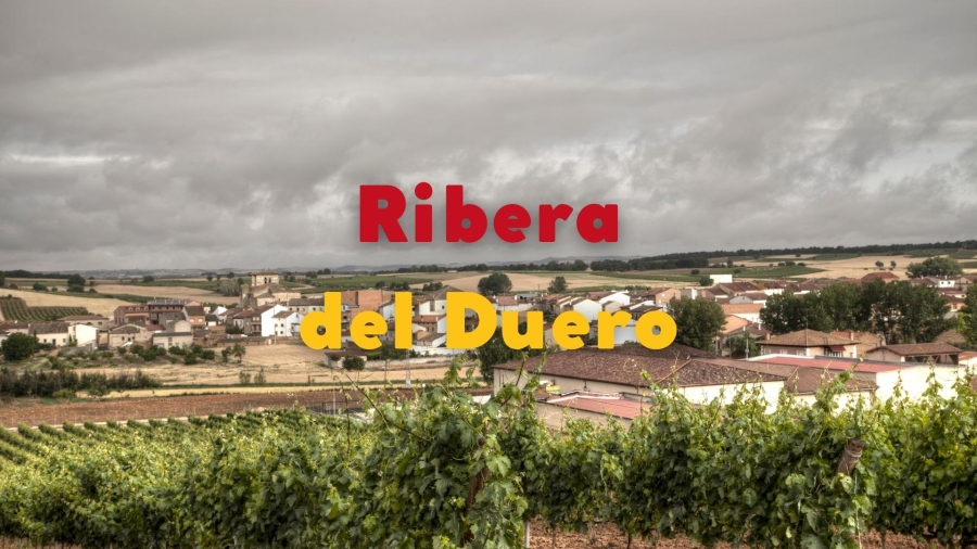 Ribera Del Duero: High and Mighty Altitude Wines with Jeni Wilson