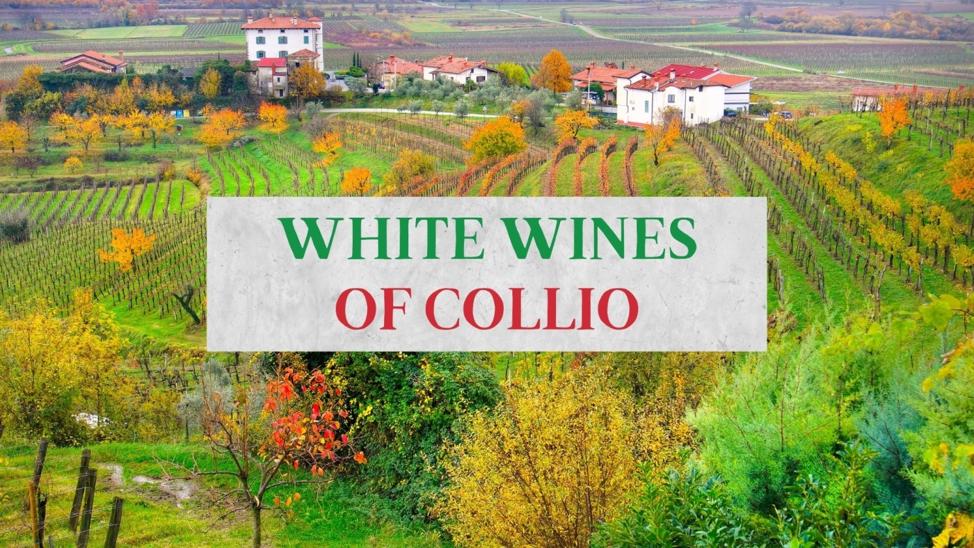 The White Wines of Collio with Richard Baudains
