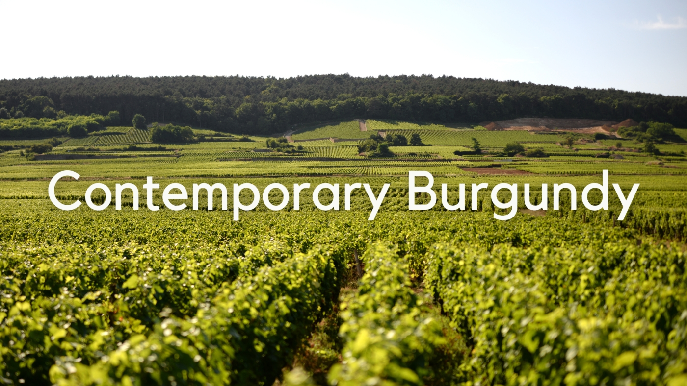 Contemporary Burgundy with Lisa Granick MW