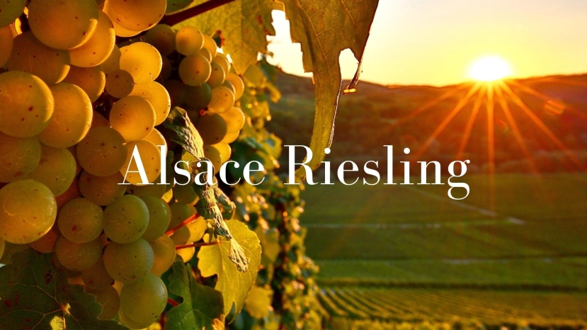 The Many Splendors of Alsace Riesling