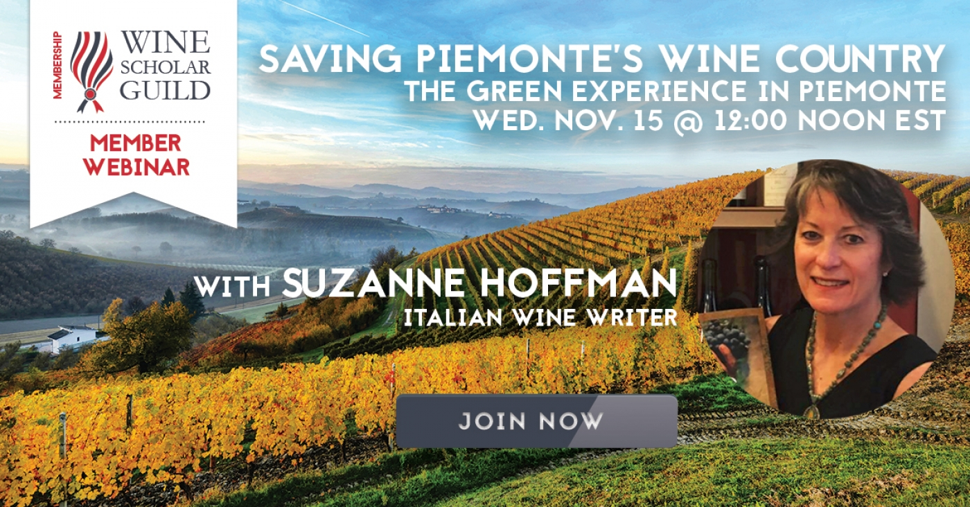 """Saving Piemonte's Wine Country"" (panel discussion)"